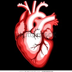 Vintage Red Real Heart Diagram 7 Pin Plug Wiring For Trailer Stock Images, Royalty-free Images & Vectors | Shutterstock