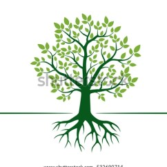 Family Tree Diagram Template Leviton Switch With Pilot Light Wiring Green Vector Roots Illustration Stock (royalty Free) 532690714 - Shutterstock