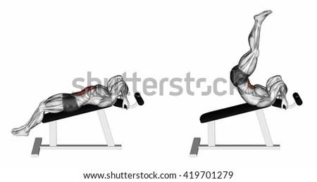 Flexion Imágenes pagas y sin cargo, y vectores en stock