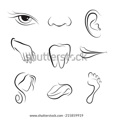 Eyes Nose Lips Coloring Pages