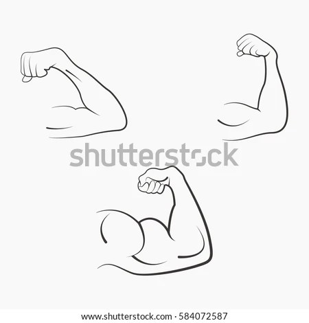 Set Strong Power Muscle Arms Stages Stock Vector 584072587