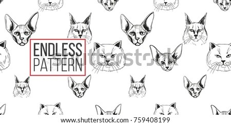 Isolated Black White Vector Animal Skull Stock Vector
