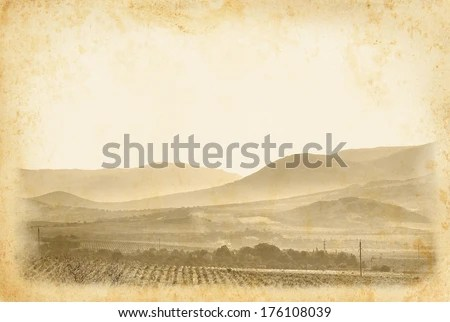 Vintage Wine Label Stock Images Royalty Free Images Amp Vectors Shutterstock