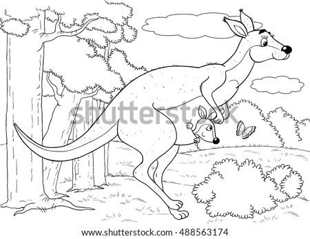 Zoo Australian Animals Cute Mother Kangaroo Stock