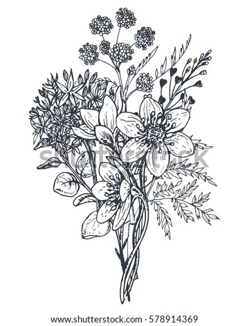 Hand Drawn Flowers Stock Images, Royalty-Free Images