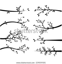 Tree Branch Silhouette Stock Images, Royalty-Free Images ...