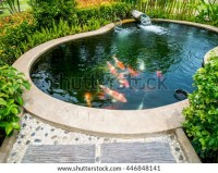 Fish Pond Stock Images, Royalty
