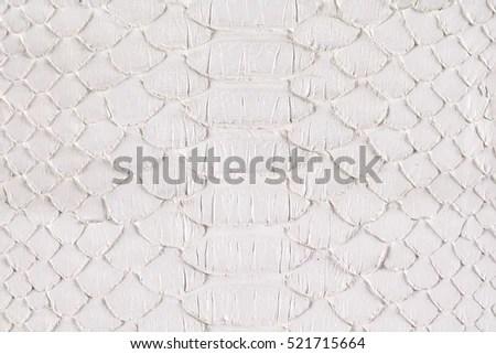 Scary Snake Skin White Background Stock Photo (Edit Now