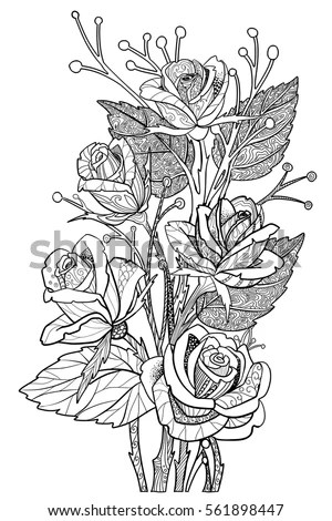 Rose Flowers Coloring Book Page Floral Stock Vector