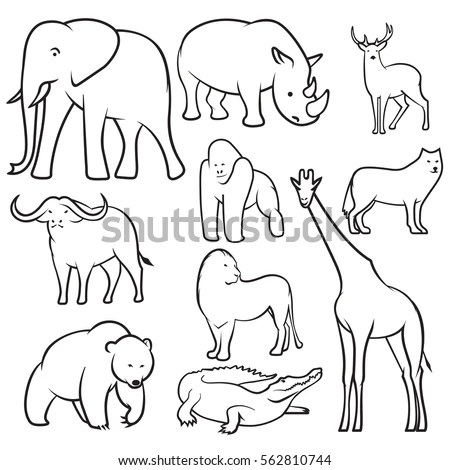 Collection Wild Animals Sketches Vector Animal Stock
