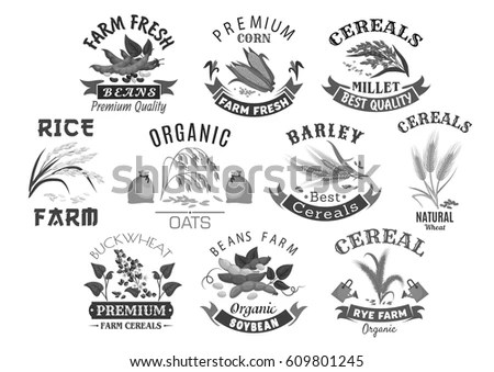 Sheaf Of Corn Stock Images, Royalty-Free Images & Vectors