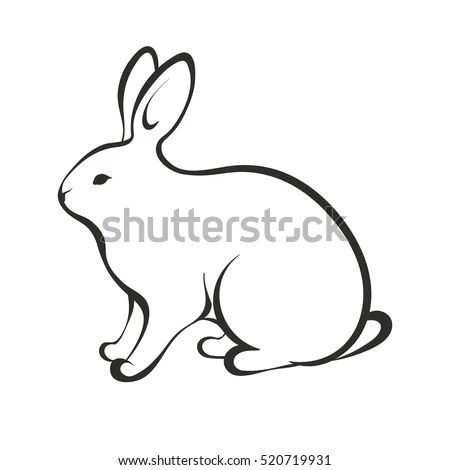How to draw a cottontail rabbit