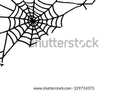 Vector Spider Web Small Spider On Stock Vector 209423908