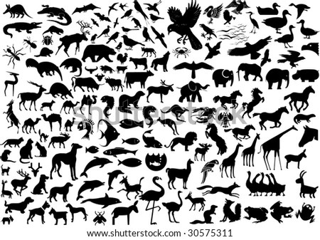 Wildlife Silhouettes Stock Photography