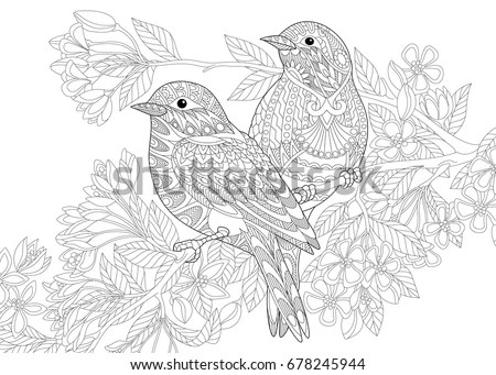 Coloring Page Two Birds Freehand Sketch Stock Vector
