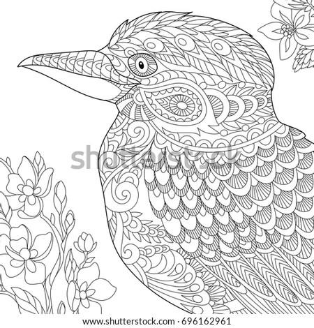 Kookaburra Coloring Page Kids Sketch Coloring Page