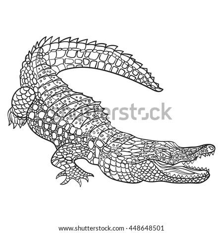 Crocodile Stock Photos, Royalty-Free Images & Vectors