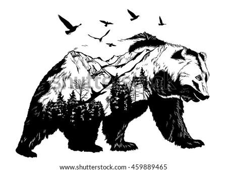 Bear Stock Photos Royalty Free Images Amp Vectors