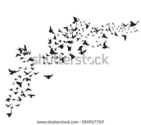 Bird Flock Vector Flying Birds Silhouettes Stock Vector