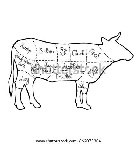 Cut Meat Set Poster Butcher Diagram Stock Vector 662073304