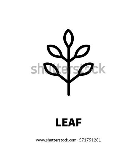 Ear Wheat Vector Logo Template Creative Stock Vector