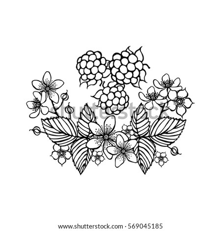 Vector Illustration Zentangl Peacock Frame Flowers Stock