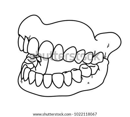 Dental Prosthesis Hand Drawn Vector Doodle Stock Vector