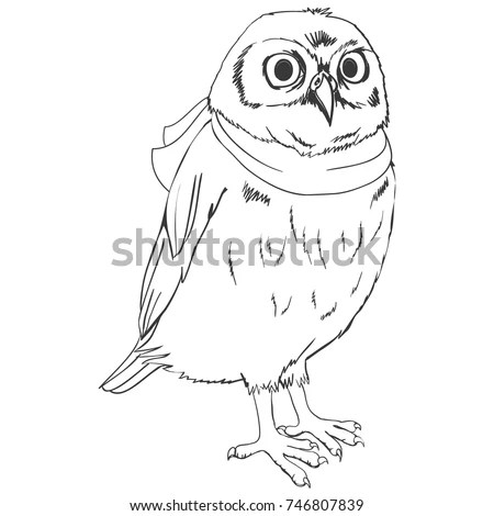 Owl Sketch Stock Images, Royalty-Free Images & Vectors