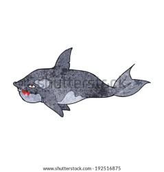 cartoon shark whale killer angry marine part shutterstock vector