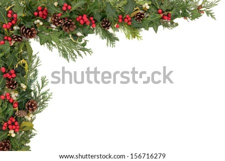 Christmas Ivy Stock Images RoyaltyFree Images Vectors