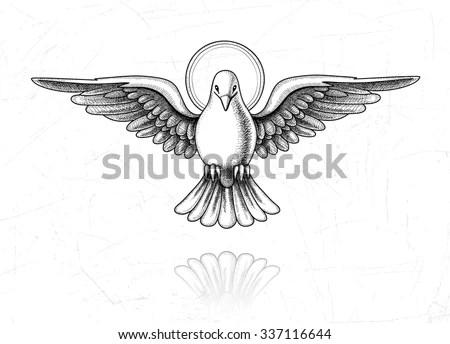 Vector Illustration Holy Spirit Dove Flight Stock Vector
