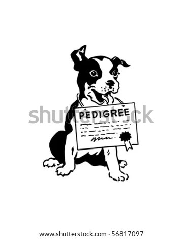 Dog Certificate Stock Images, Royalty-Free Images