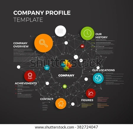 Vector Company Infographic Overview Design Template Stock Vector 382724047  Shutterstock