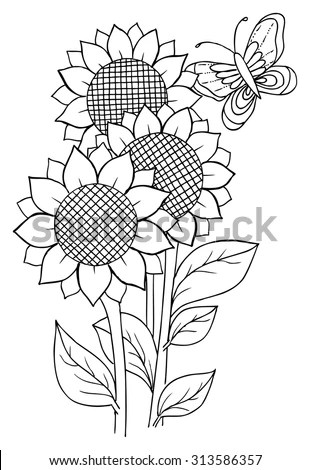 Sunflowers Butterfly Coloring Stock Vector 313586357