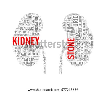 Kidney-shaped Stock Images, Royalty-Free Images & Vectors