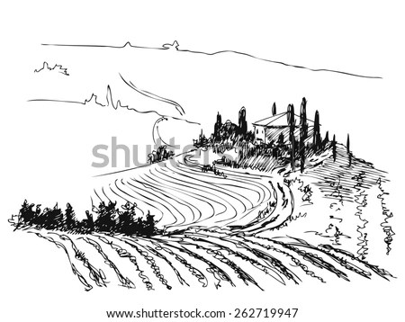 Ink Contour Drawn Tuscany Villa Fields Stock Vector