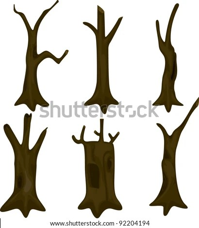 Tree Trunk Stock Images Royalty Free Images Amp Vectors