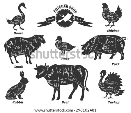 Parts Of A Butcher Pig. Diagrams. Wiring Diagram Images