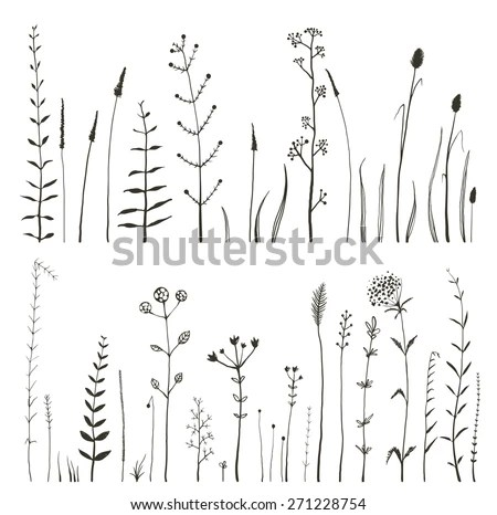 Sketchy Wild Field Flowers Grass On Stock Vector 271228754