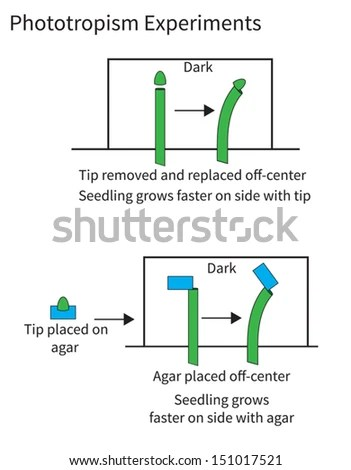 light wave diffraction diagram automobile ac wiring photoiconix's