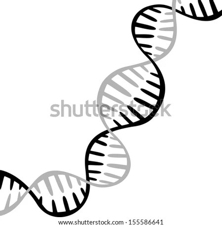 Doodle Style Genetic Dna Double Helix Stock Vector