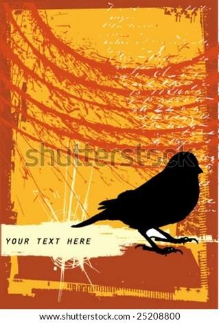 Fall Bird Feeder Wallpaper Bird Droppings Stock Photos Royalty Free Images Amp Vectors