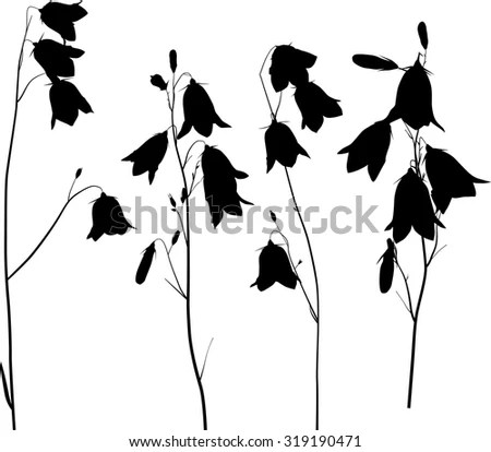 Bluebell Flower Stock Images, Royalty-Free Images