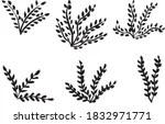 Simple Leaf Border 6 Free stock photos Rgbstock Free stock images xymonau January 01 2015 4
