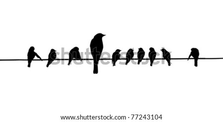 Silhouette Birds Purple Martins On Telephone Stock Vector