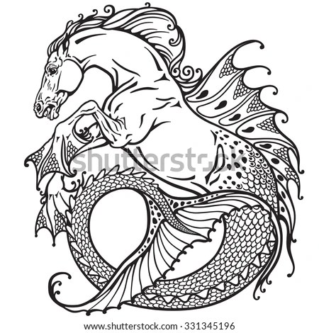 hippocampus or kelpie mythological sea-horse . Black and