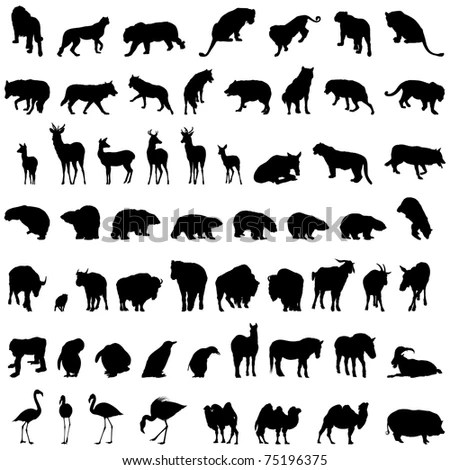 Forest Animals Silhouettes Collection Stock Vector