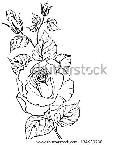 Black Silhouette Rose Isolated Over White Stock Vector