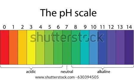 Colorful P H Scale Stock Vector 630394505 Shutterstock