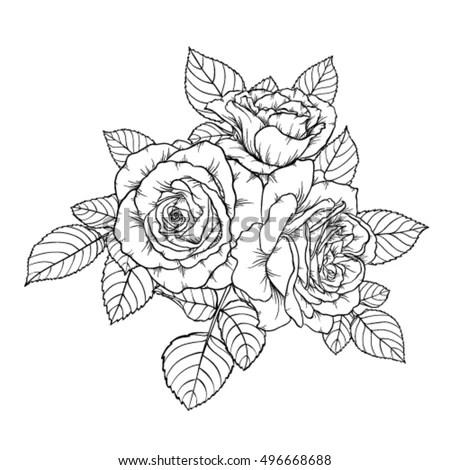 Beautiful Monochrome Black White Bouquet Rose Stock Vector